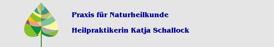Naturheilkunde Grimma Chelattherapie Schallock